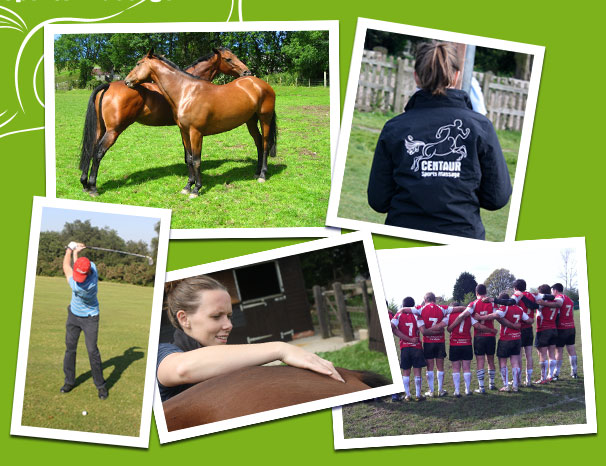 North Cotswolds - Sports, Remedial & Equine Sports Massage
